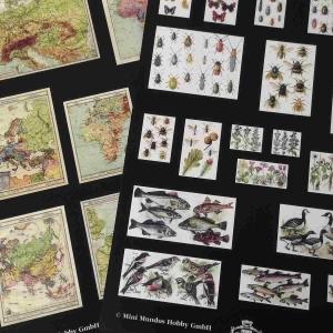 Landkarten und Schautafeln